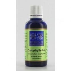 huile-végétale-calophylle