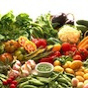 La nutrition kesaquo?