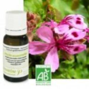 L'huile essentielle de Géranium et son hydrolat
