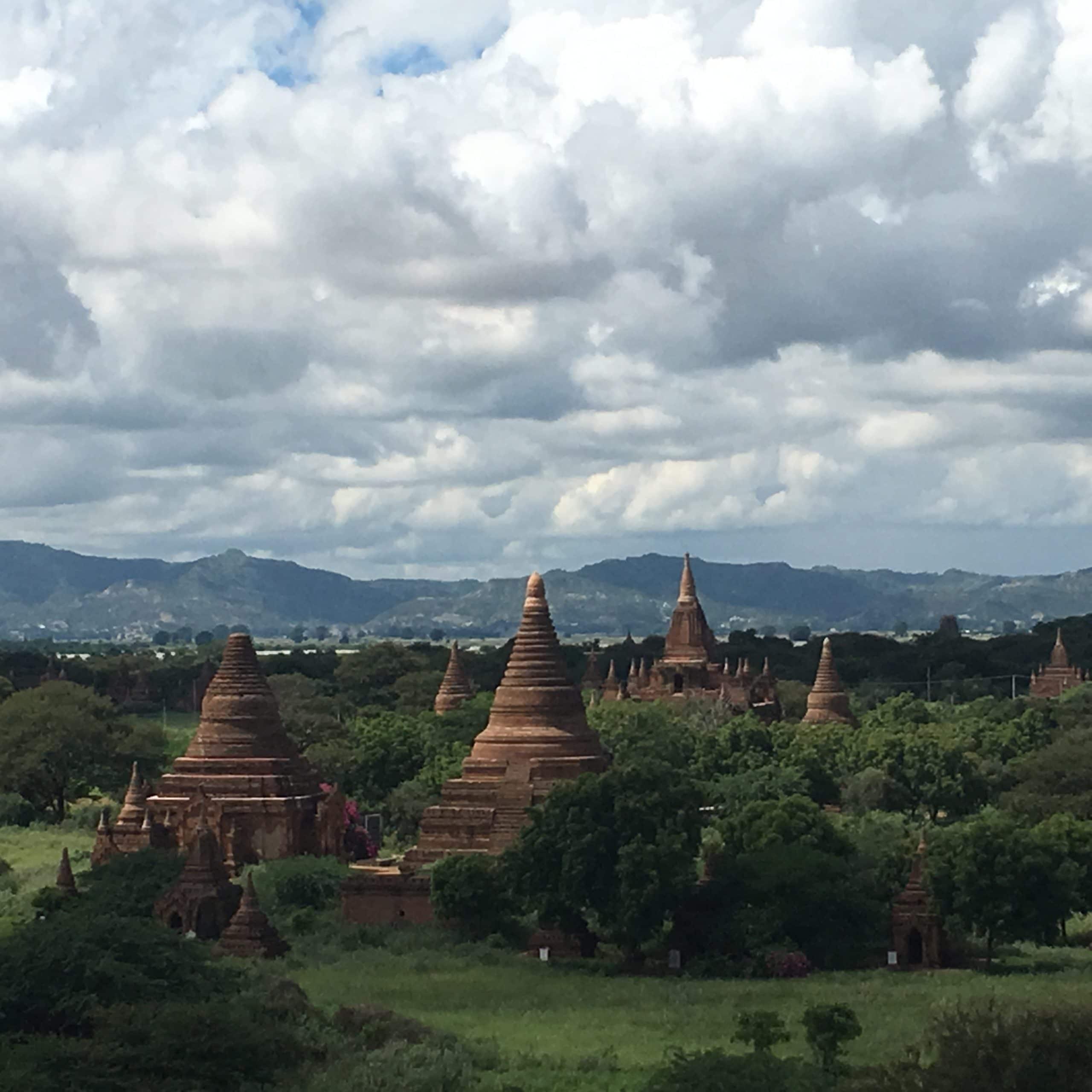 You are currently viewing Germination et jeunes pousses, une pépite d'or en Birmanie