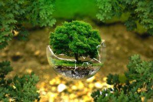 environnement-et-sante
