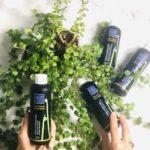 Découvrez les vertus des hydrolats